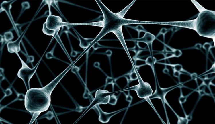 Восстановление нейронов