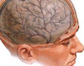 Токсическая энцефалопатия: симптомы и лечение