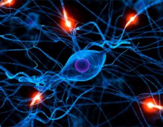 Эпилепсия в голове