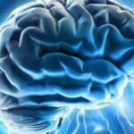 Фокальная эпилепсия: что это, симптомы, лечение