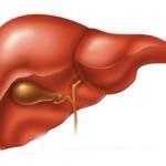 Печеночная энцефалопатия: что это, симптомы и лечение
